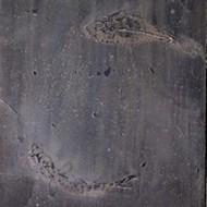 détail d`une peinture du peintre Alain Bailly domicilié à Thurins